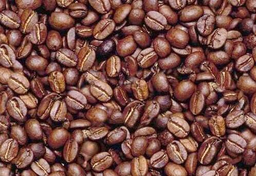 beanface