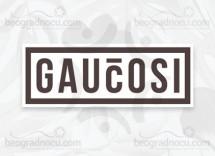 Druga Kuca Gaucosi logo