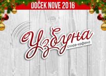 Docek Nove godine 2016 kafana Uzbuna