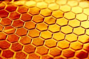 Prikaz saće od meda